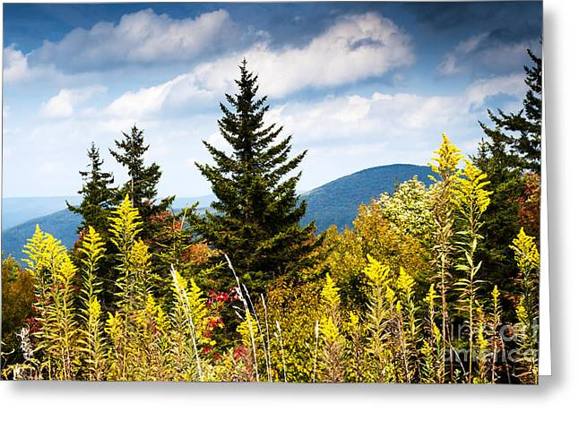 Autumn View Highland Scenic Highway Greeting Card by Thomas R Fletcher