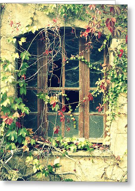 Autumn Vines Across A Window Greeting Card by Georgia Fowler