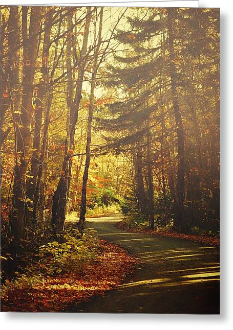 Autumn Walk Greeting Card by Gary Smith