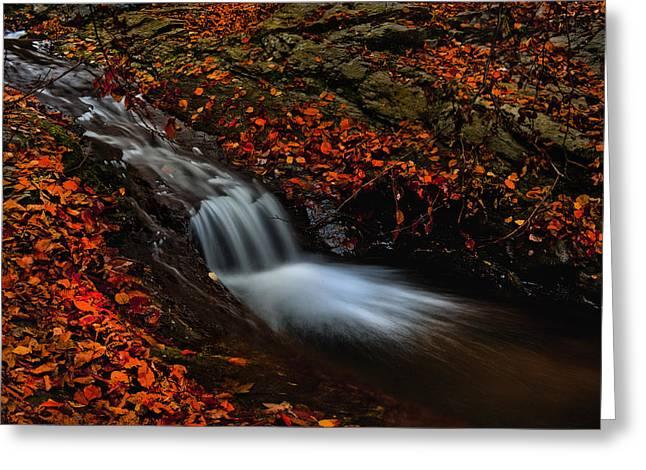 Autumn Waterfall Greeting Card by Irinel Cirlanaru