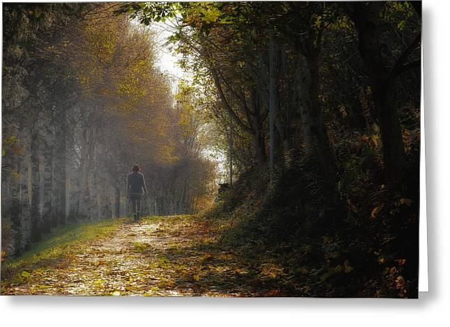Autumn Way Greeting Card by Jaroslaw Oleksyk