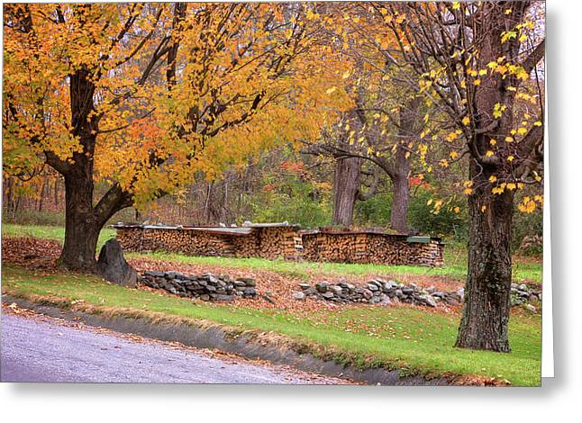 Greeting Card featuring the photograph Autumn Woodpile by Tom Singleton