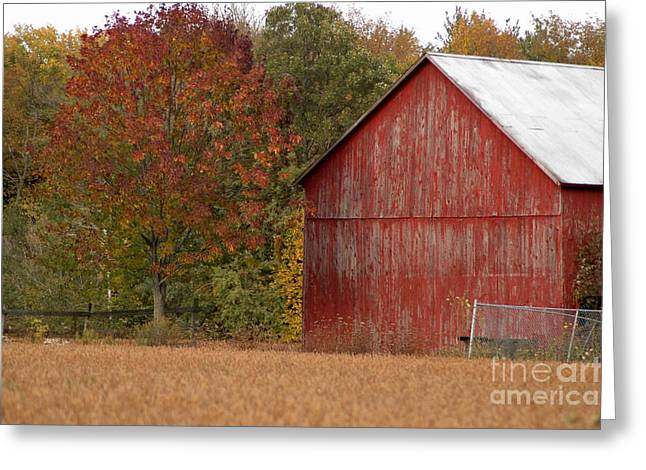 Autumnal Barn Greeting Card by Ginger Harris