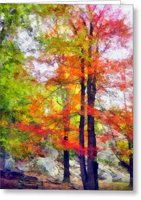 Autumnal Rainbow Greeting Card