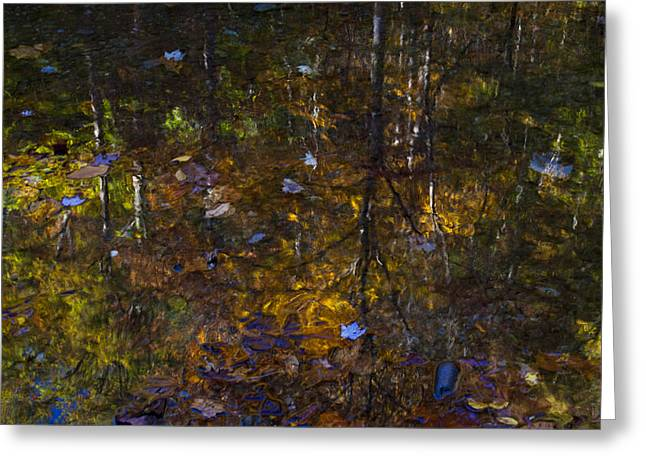 Autumnal Reflection Greeting Card by Jim Neumann