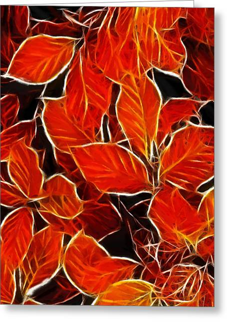 Autums Blood Greeting Card by Steve K