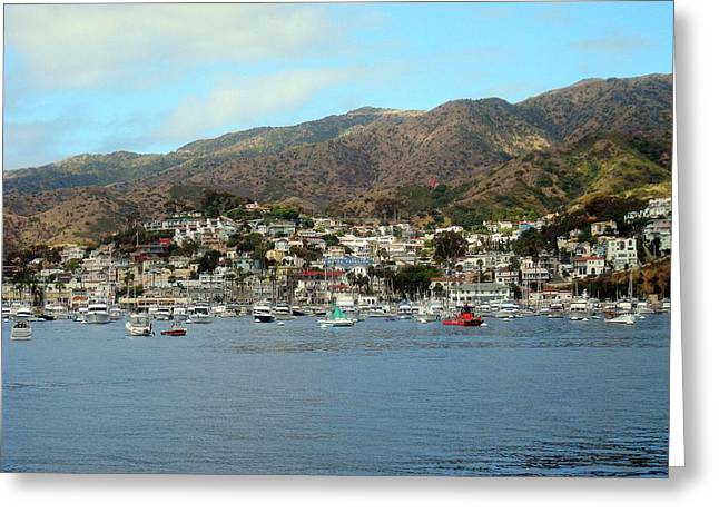 Avalon Harbor 3 Greeting Card