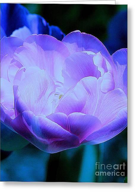 Avatar's Tulip Greeting Card