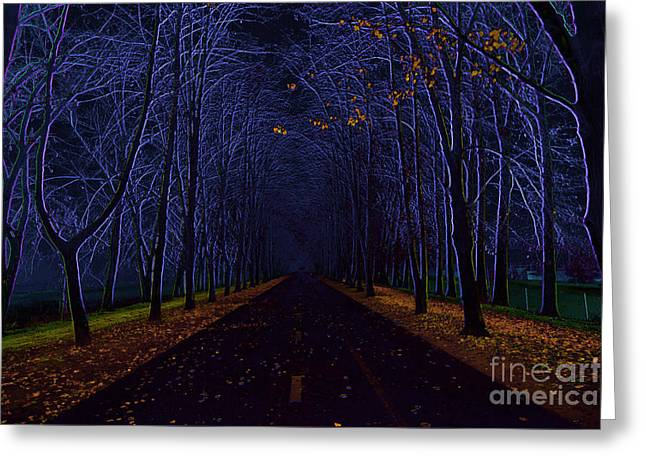 Avenue Of Trees Greeting Card by Michal Boubin