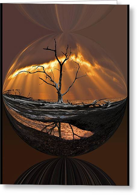 Awakening Greeting Card by Debra and Dave Vanderlaan