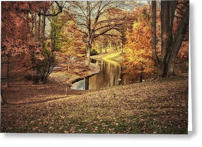 Greeting Card featuring the photograph Awesome Autumn by Mary Timman