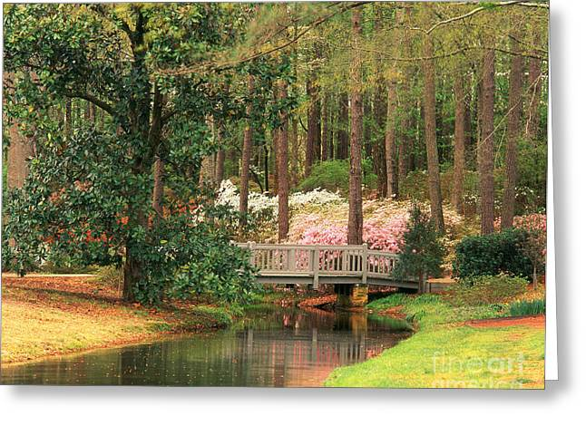 Azaleas And Footbridge Greeting Card by Michael Hubrich and Photo Researchers