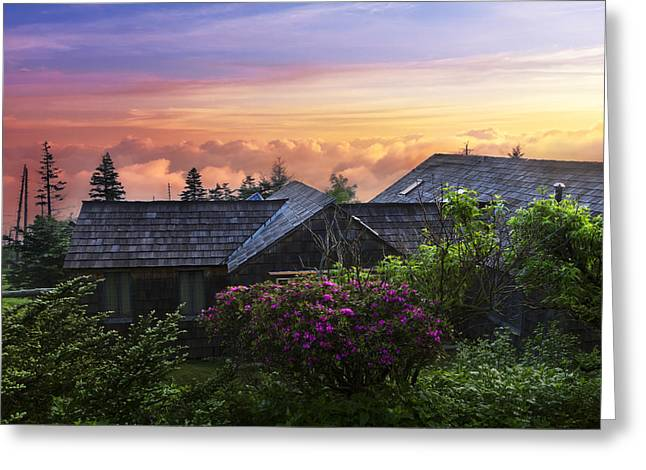Azaleas At Sunrise Greeting Card by Debra and Dave Vanderlaan