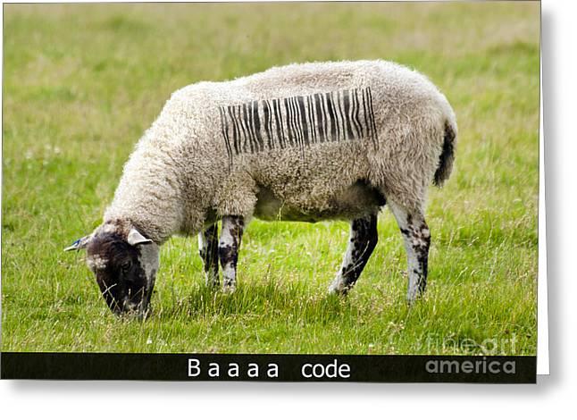 Baaaa Code Greeting Card by Steev Stamford