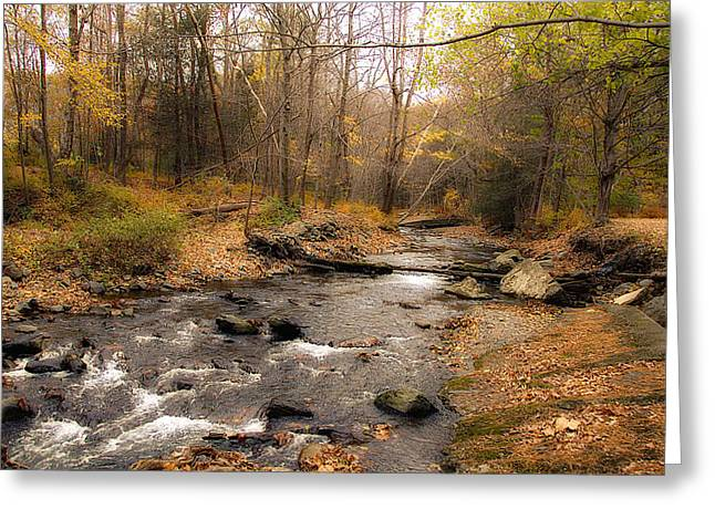 Babbling Brook In Autumn Greeting Card