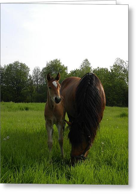 Babe With Mom Greeting Card
