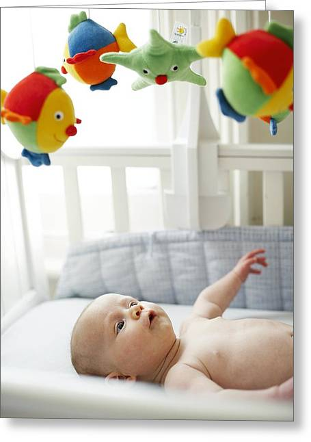 Baby Boy In His Cot Greeting Card by Ian Boddy