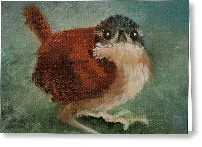 Baby Carolina Wren 2 Greeting Card