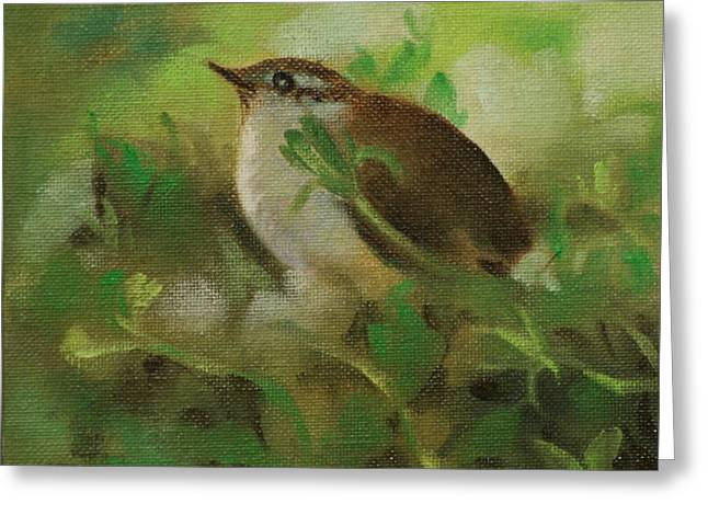 Baby Carolina Wren Greeting Card