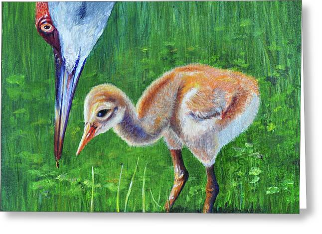 Baby Crane's Lesson Greeting Card by AnnaJo Vahle