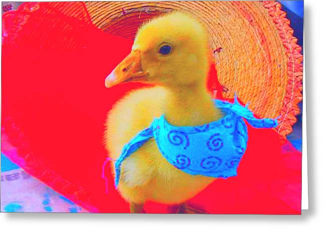 Greeting Card featuring the painting Baby Dodo by Bogdan Floridana Oana