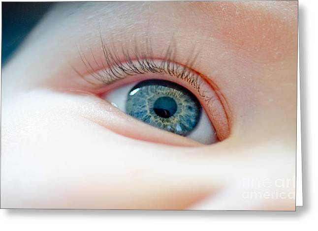 Baby Eye Close-up Of A Blue Eye Greeting Card by Andy Smy