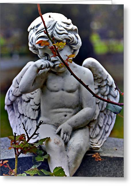 baby tears I Greeting Card by Phil Bongiorno