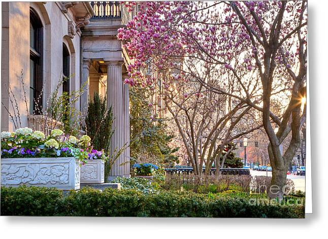 Greeting Card featuring the photograph Back Bay Spring by Susan Cole Kelly