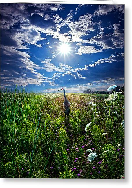 Back Home Greeting Card by Phil Koch