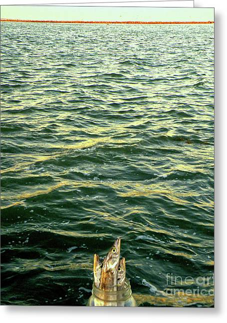 Back To The Sea Greeting Card by Joe Jake Pratt