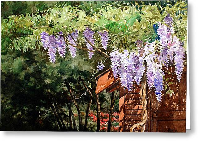 Backyard Wisteria Greeting Card by Peter Sit