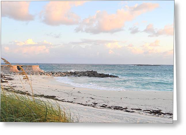 Bahamas Beach Greeting Card by Nicky Dou