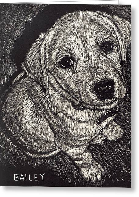 Bailey The Puppy Greeting Card by Robert Goudreau