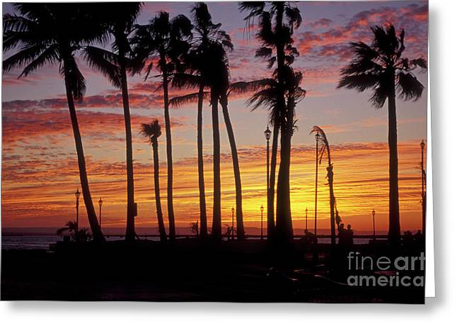 Greeting Card featuring the photograph Baja Sunset La Paz  Mexico by John  Mitchell