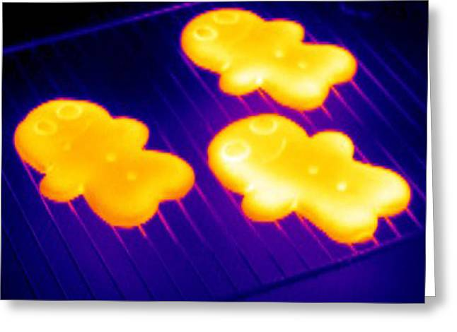 Baked Gingerbread, Thermogram Greeting Card by Tony Mcconnell