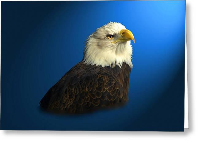 Bald Eagle - Blyth - In Captivity Greeting Card