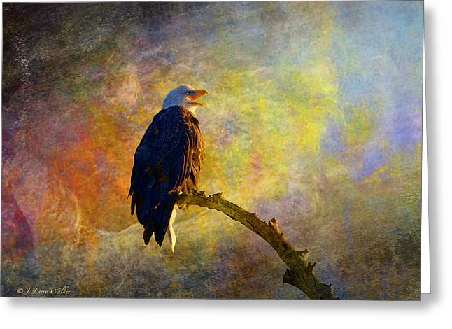 Bald Eagle Awaiting Sunrise Greeting Card by J Larry Walker