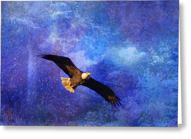 Bald Eagle Bringing A Fish Greeting Card