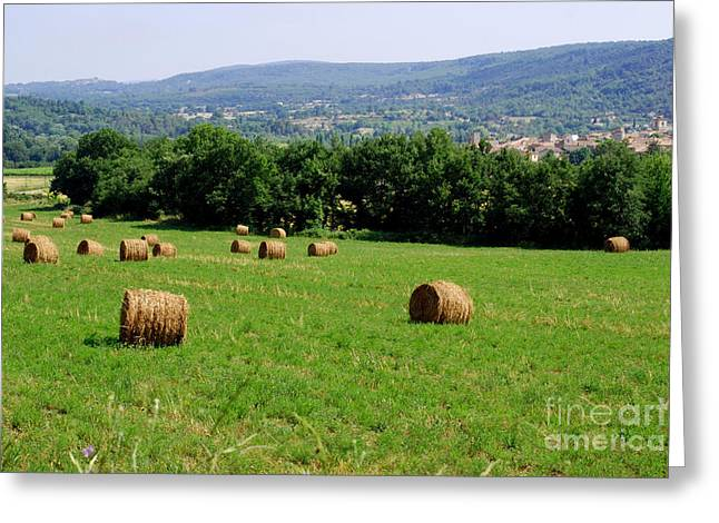 Bales Of Hay Greeting Card by Andrea Simon