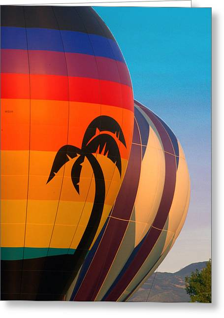 Balloon Launch Greeting Card by Carol Norman