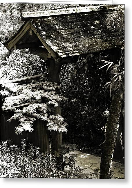 Bamboo Garden -2 Greeting Card by Alan Hausenflock