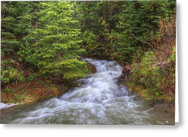 Banff Spring Creek Flow Greeting Card by Sam Amato