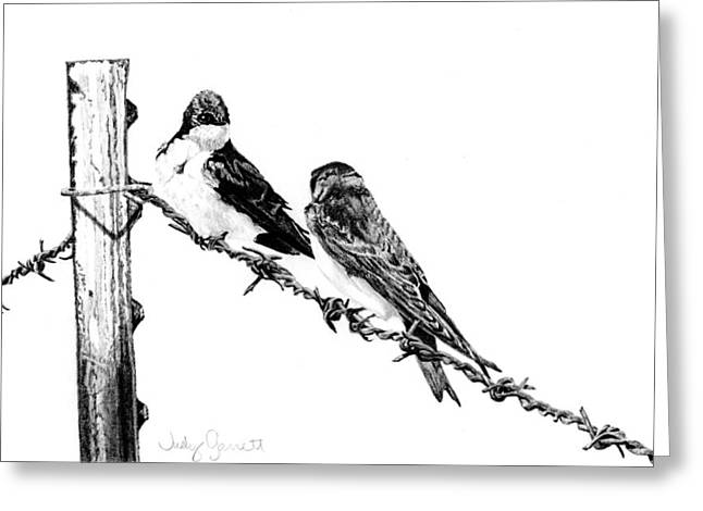 Barbed Wire Courtship Greeting Card by Judy Garrett
