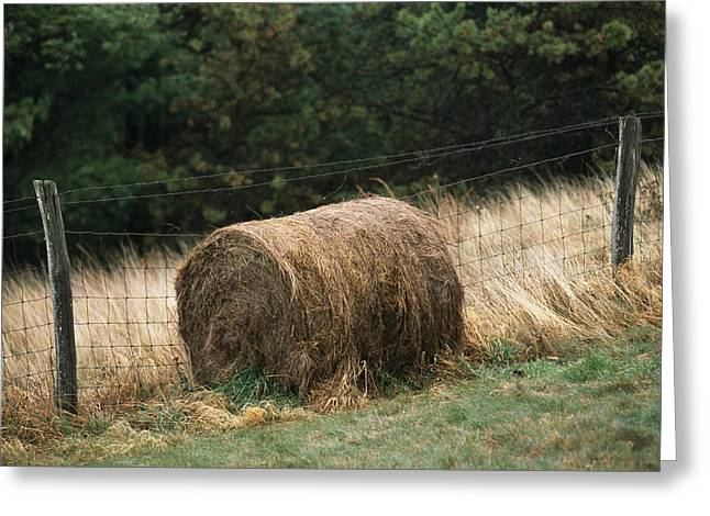Barbed Wire Fence And Hay Roll Greeting Card by Raymond Gehman