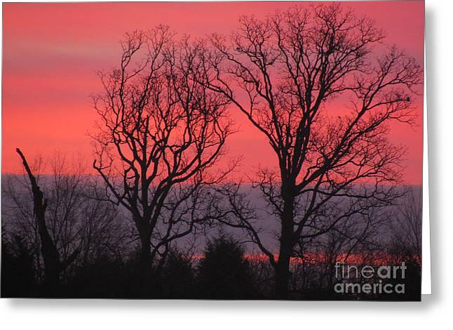 Bare Essentials Greeting Card by Michele Bishop