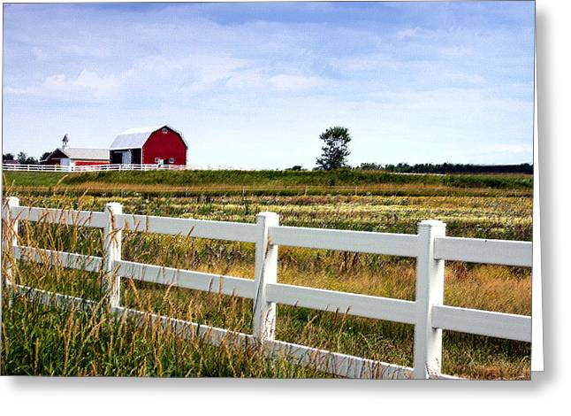 Barn And Fence Greeting Card by Cheryl Cencich