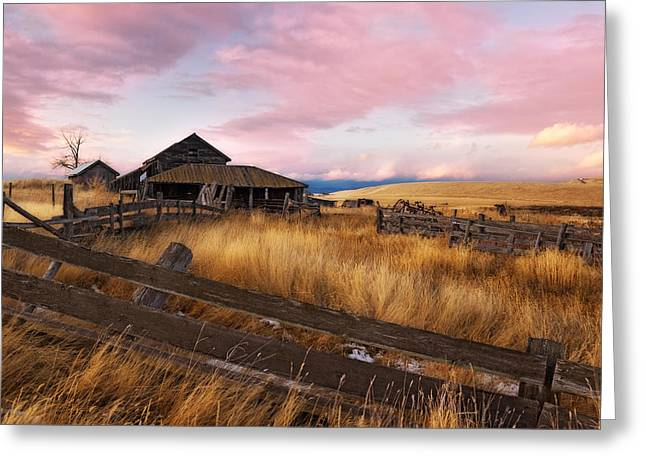 Barn And Field 1 Greeting Card by Peter Olsen