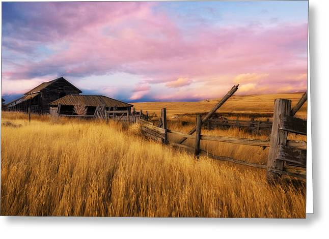 Barn And Field 2 Greeting Card by Peter Olsen