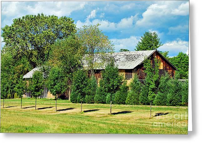 Barn And Trees Greeting Card