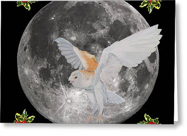 Barn Owl Christmas Greeting Card